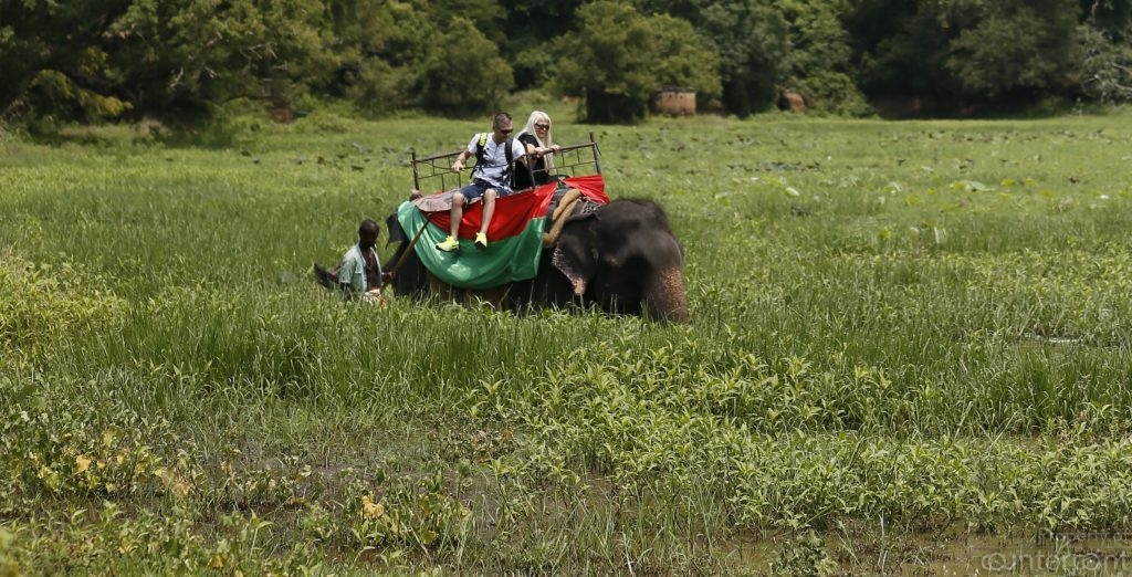 It's fun and adventure only to the riders. Elephants are cruelly beaten into submission, so they could be used for work and to participate in religious functions.  Rides, as pictured here, give the animal no rest at all.