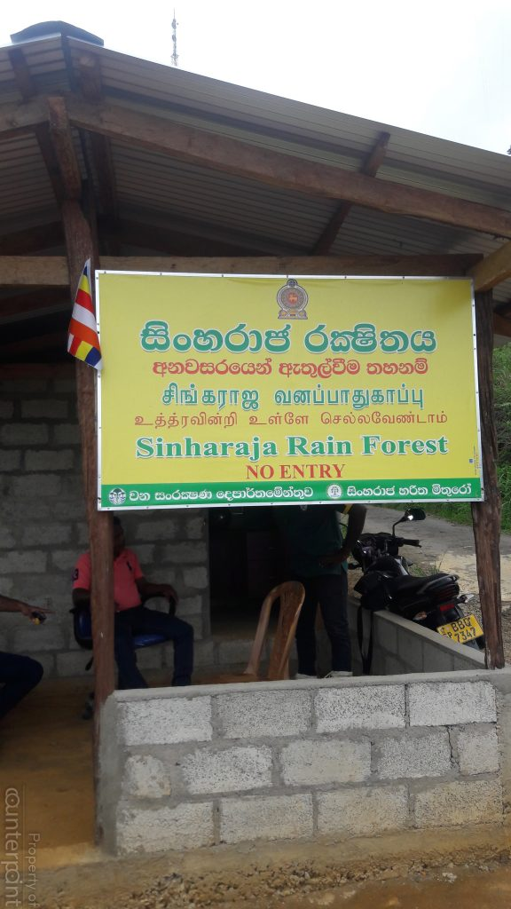Community based organisations have been contributing towards saving the rain forest.